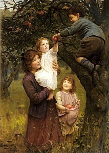 picking-apples