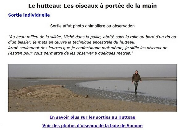 Guide nature en Baie de Somme