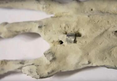 Les petites momies du Pérou