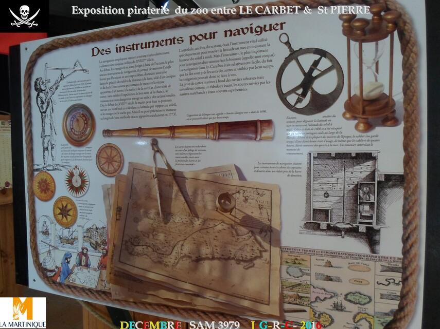 EXPO PIRATERIE ZOO DE MARTINIQUE: 1/2       D    23/02/2018