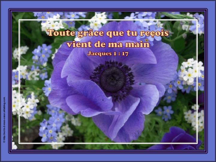 Toute grâce que tu reçois vient de ma main - Jacques 1 : 17