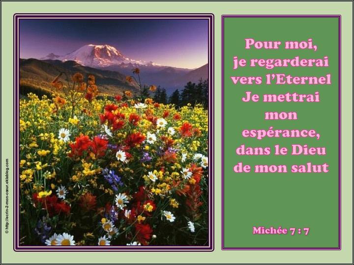 Je mettrai mon espérance dans le Dieu de mon salut - Michée 7 : 7