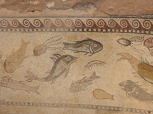 Sbeitla-mosaique-poissons--2-.JPG