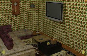 Cat owner's room