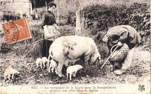 1927  Les efforts de la ligue pour la repopulation de la France