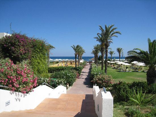 Tunisie-jardins.jpg