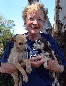 Cora Bailey, Directrice du Projet communautaire pour les animaux (CLAW)