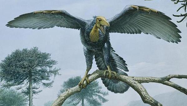 préhistoriques créatures-animaux-11