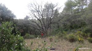 Jardin des Ermites