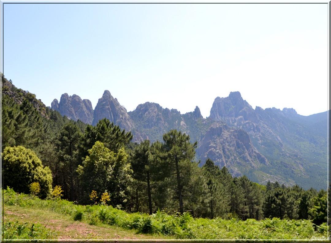 Col de Larone - Corse