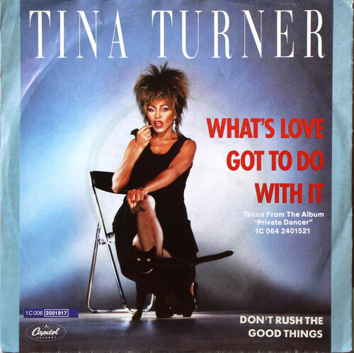 TURNER, Tina - Whats Love Got to do with It (1984)  (Pop)