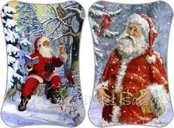 Cartonnettes Oiseaux Noël !