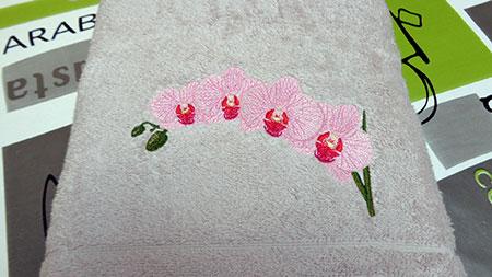 Orchidées02-01