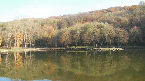 Promenade à l' étang de Rosiere, Bourgoin-Jallieu (38)