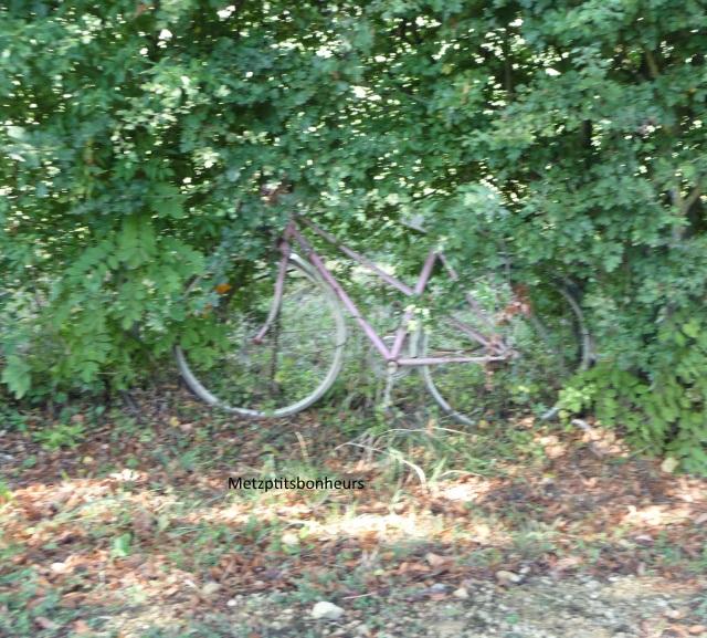 T'as pas vu mon vélo?