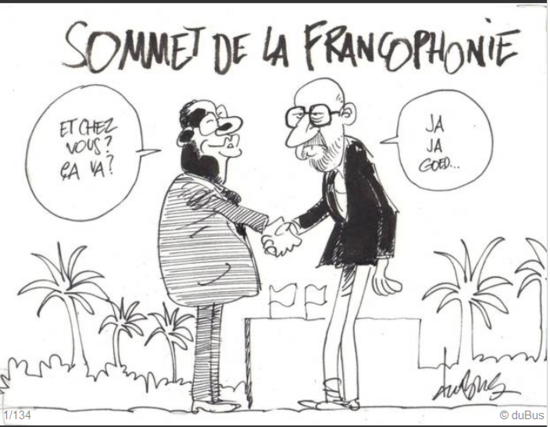 XVe sommet de la francophonie, vu de la Belgique