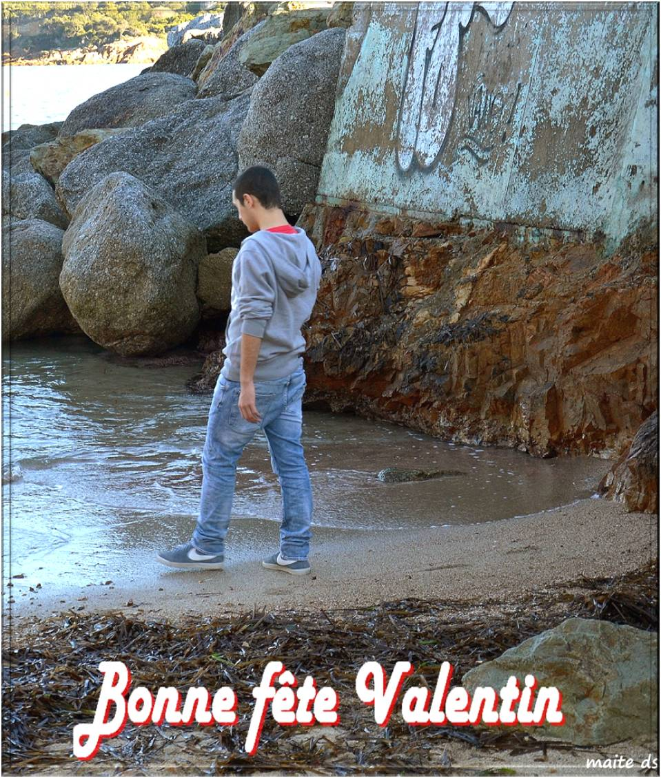 Bonne fête Valentin !