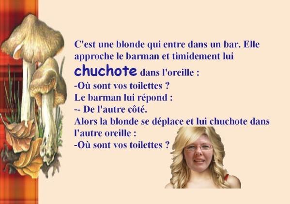 blague-blonde-1-copie-1.jpg