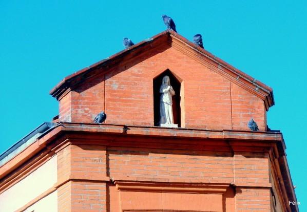 y01 - Les pigeons