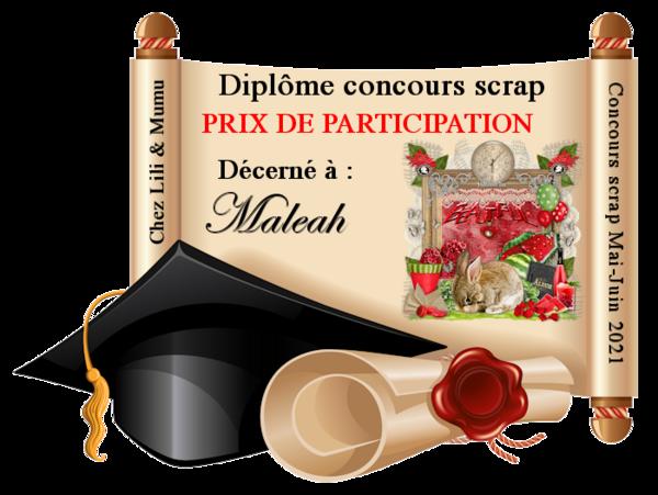 Concours Scrap Chez Liligraph - LILI *  FEV 2021