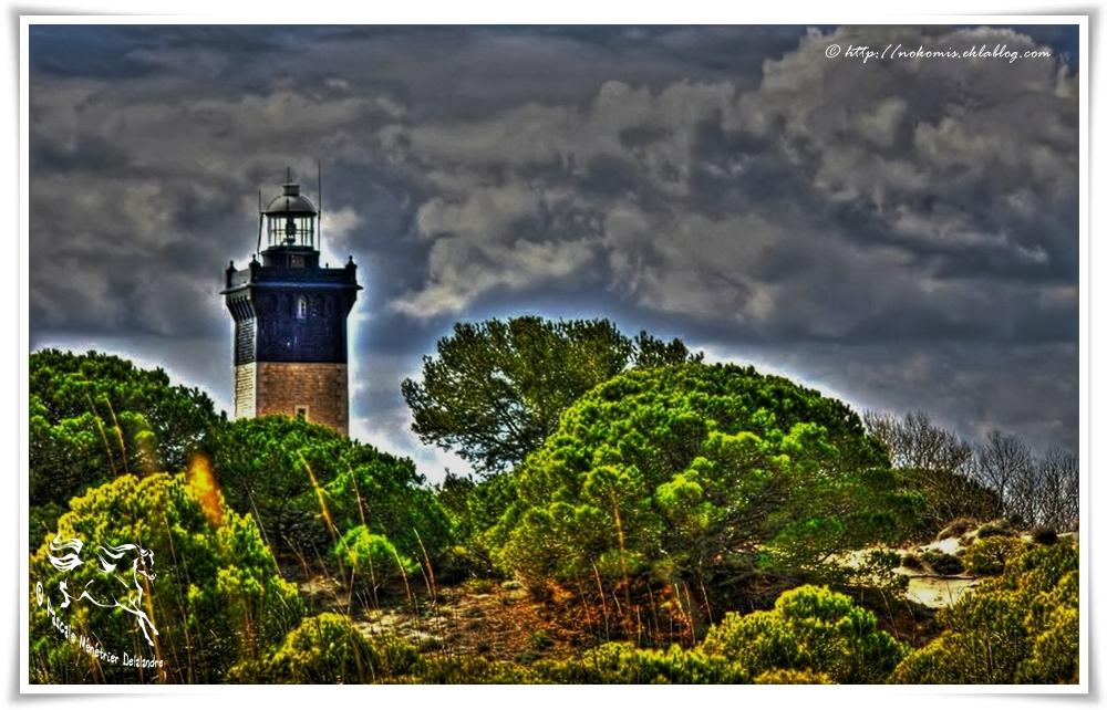 Le phare du Grau du Roi (Gard)