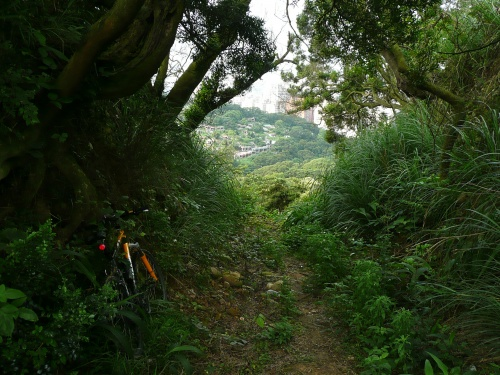 虎頭山 Crossing the ridge ilne in the graveyard route