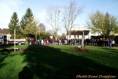 Plantation d'un arbre de la laïcité au quartier Francis Carco