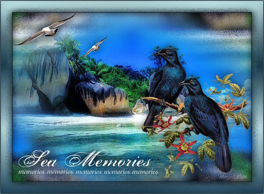 Sea memories