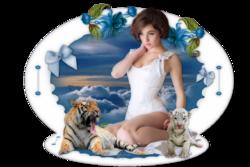 Mes Blogs