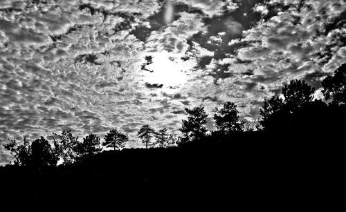 Elena LAGARIA voit en noir et blanc