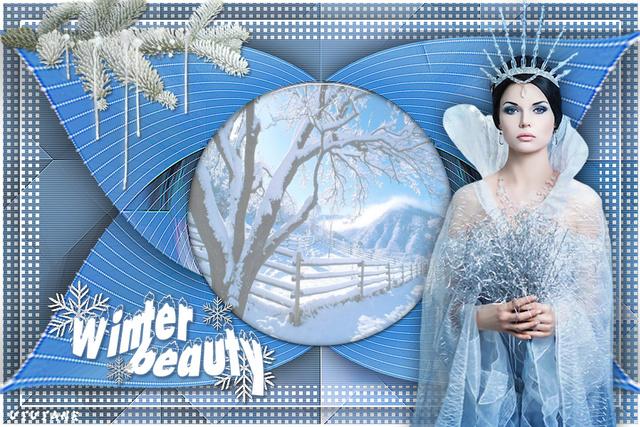 FHI0067 - Tube femme hiver