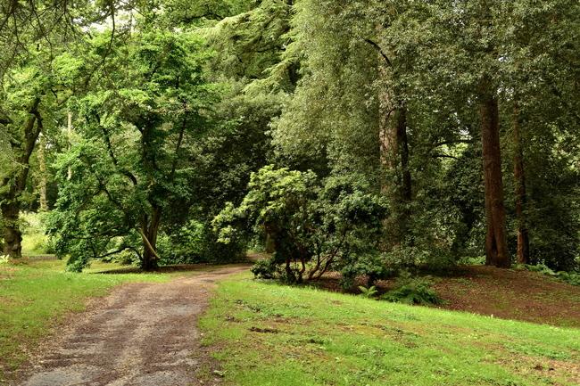 2014.08.17 Dieppe, parcs Moustiers, Shamrock (Seine-Maritime) 2ème partie
