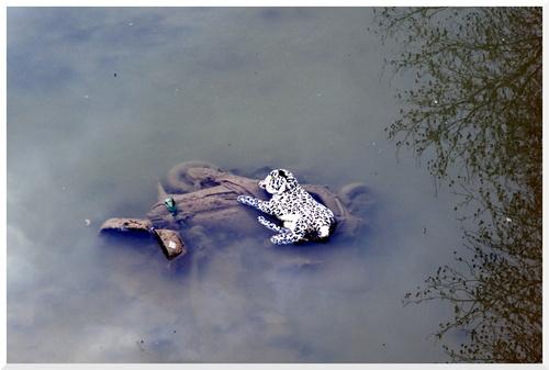 Canal Saint Martin Paris. sans eau.