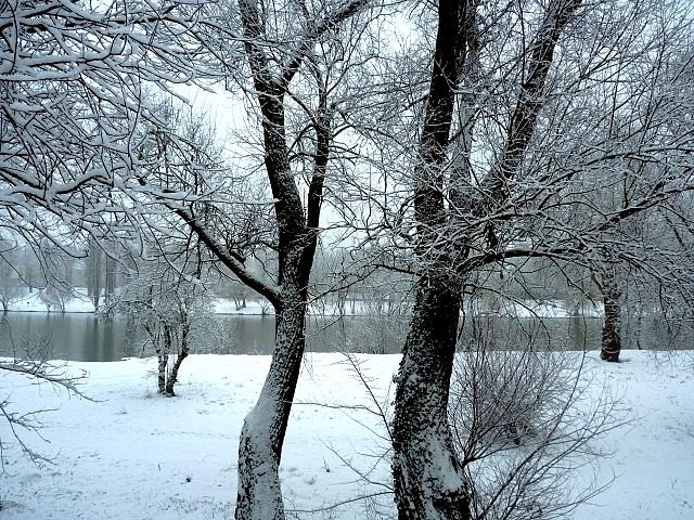 Metz sous la neige 12 Marc de Metz 16 02 2013
