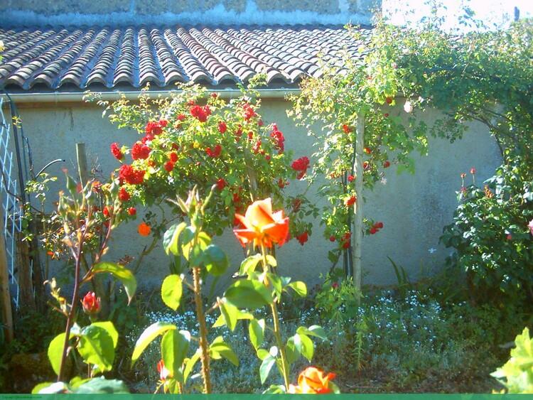 des fleurs pour jacques(Communautè des amies(is)de Jacques)