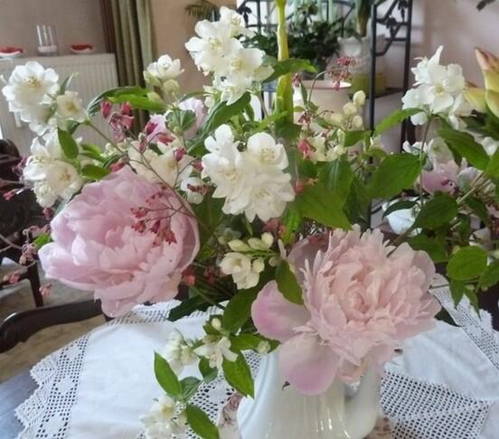 """Offrir des fleurs"" ..."