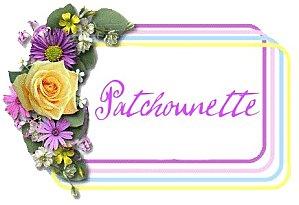 Patchounette fleurs multicolores