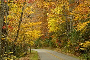 AUTUMN ROAD IN GREAT SMOKY MOUNTAINS 1439447 op 724x480
