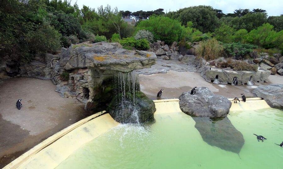 l'aquarium du Croisic (44)