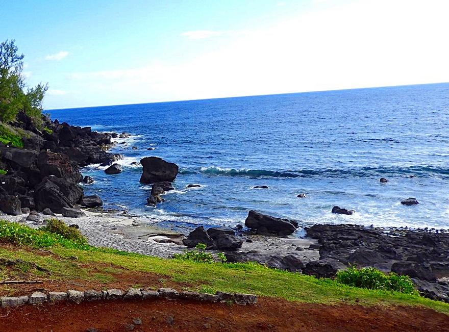 31/1/19 : Grande-Anse à la Réunion (4/7) etc...