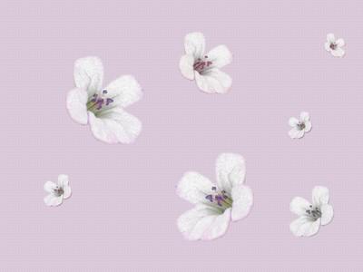 Papiers peints fleurs pour vos blogs