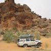 Mauritanie Sur la route de l'Espoir Plantage