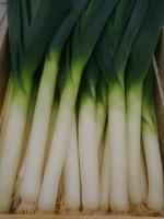 Envie de consommer des légumes de proximité ?