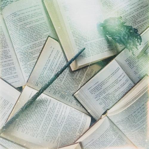 Bookstasorcier tâche n°2