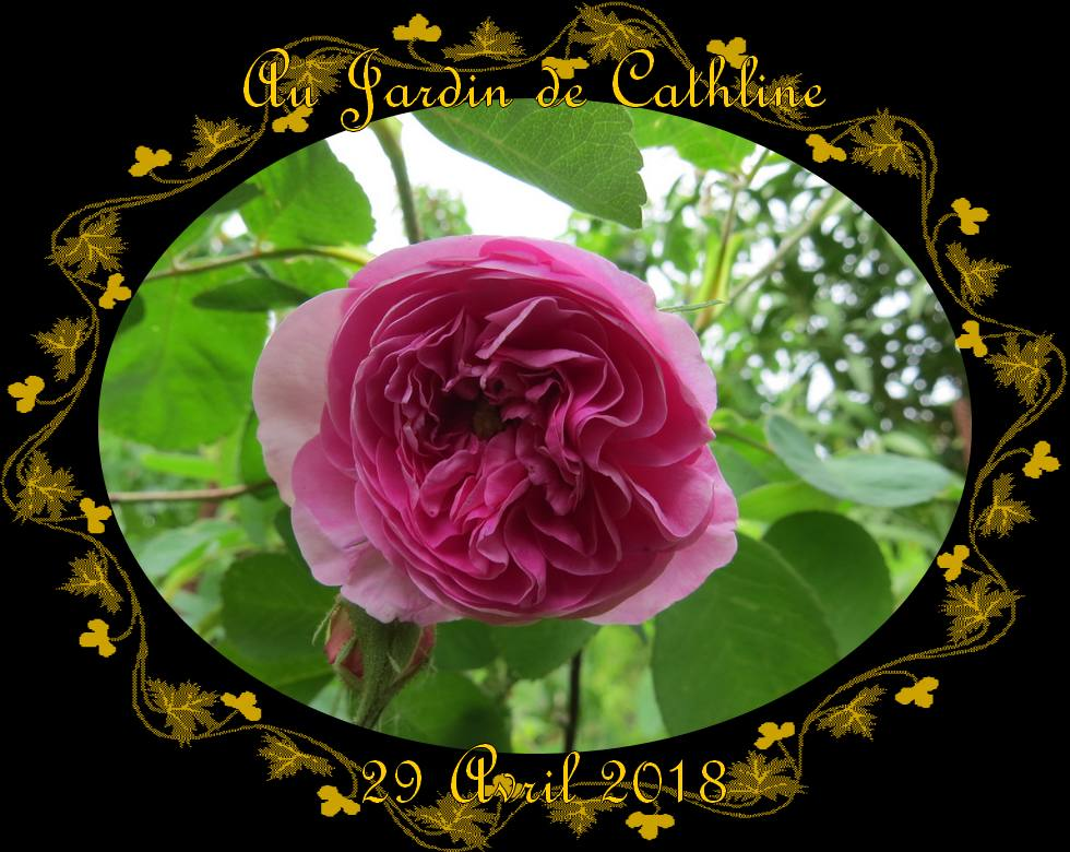 Au Jardin et Avec la Lune du 1er au 10 Mai