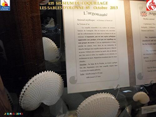 MUSEUM DU COQUILLAGE  12/14   vacances 10/ 2013  SABLES D'OLONNE    29/01/2014