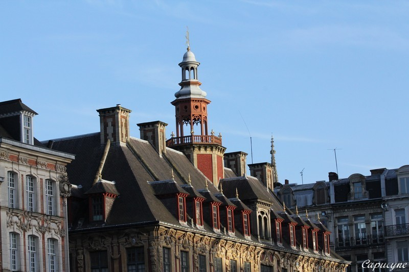 Lille 2874
