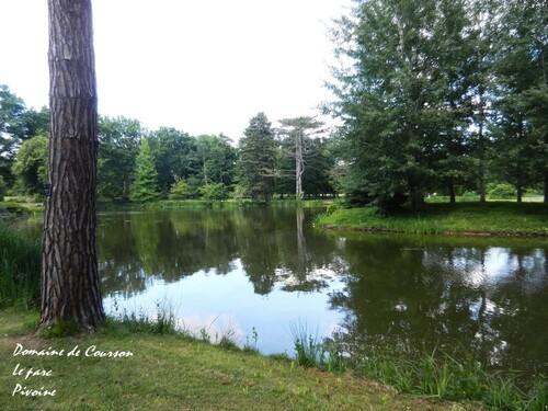 DOMAINE DE COURSON : promenade dans le parc