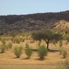Mauritanie Route de l'Espoir