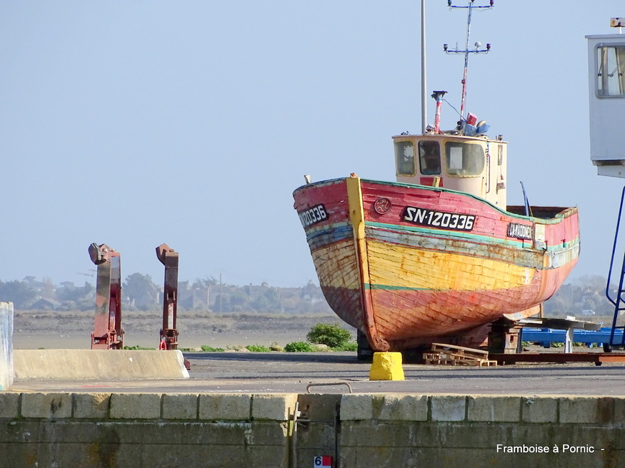 Balade sur le port du Croisic